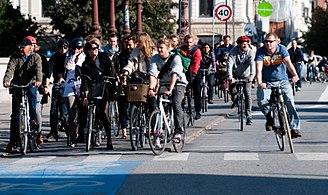 Perawatan dan Perbaikan yang Diperlukan Sepeda